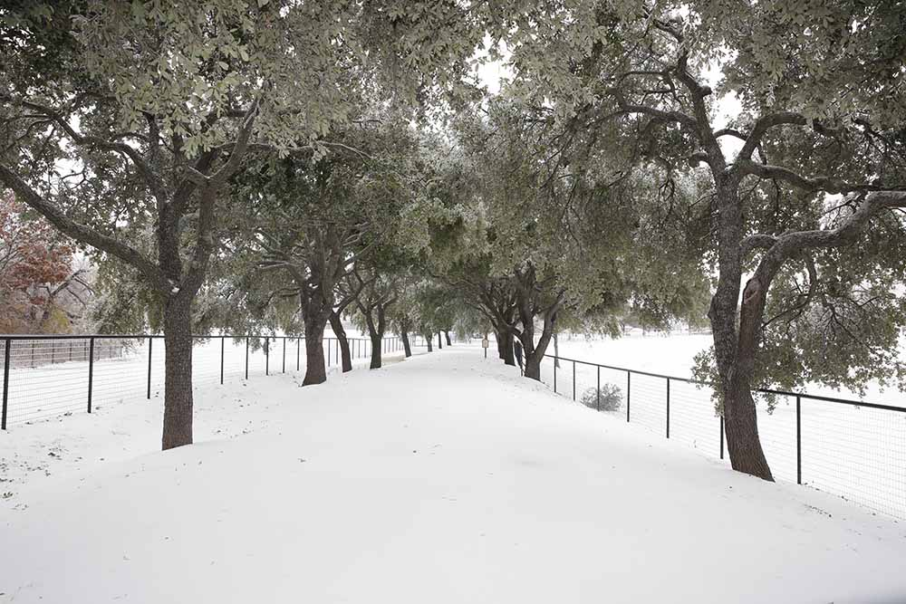 Snow Day in North Texas-Photo at Manegait Entrance McKinney!