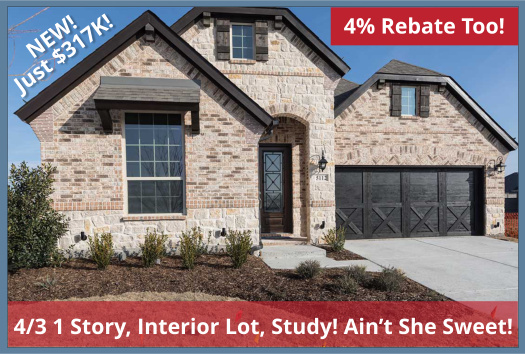 Spec Inventory Home for Sale in Little Elm, Huge Price Reduction